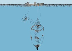 {'fisheries': [<License: Hawaiian Coastal Pelagic Fish by Hoop Net>, <License: Hawaiian Opelu with Hoop Net>], 'gear': <Gear: Hoop Net>}